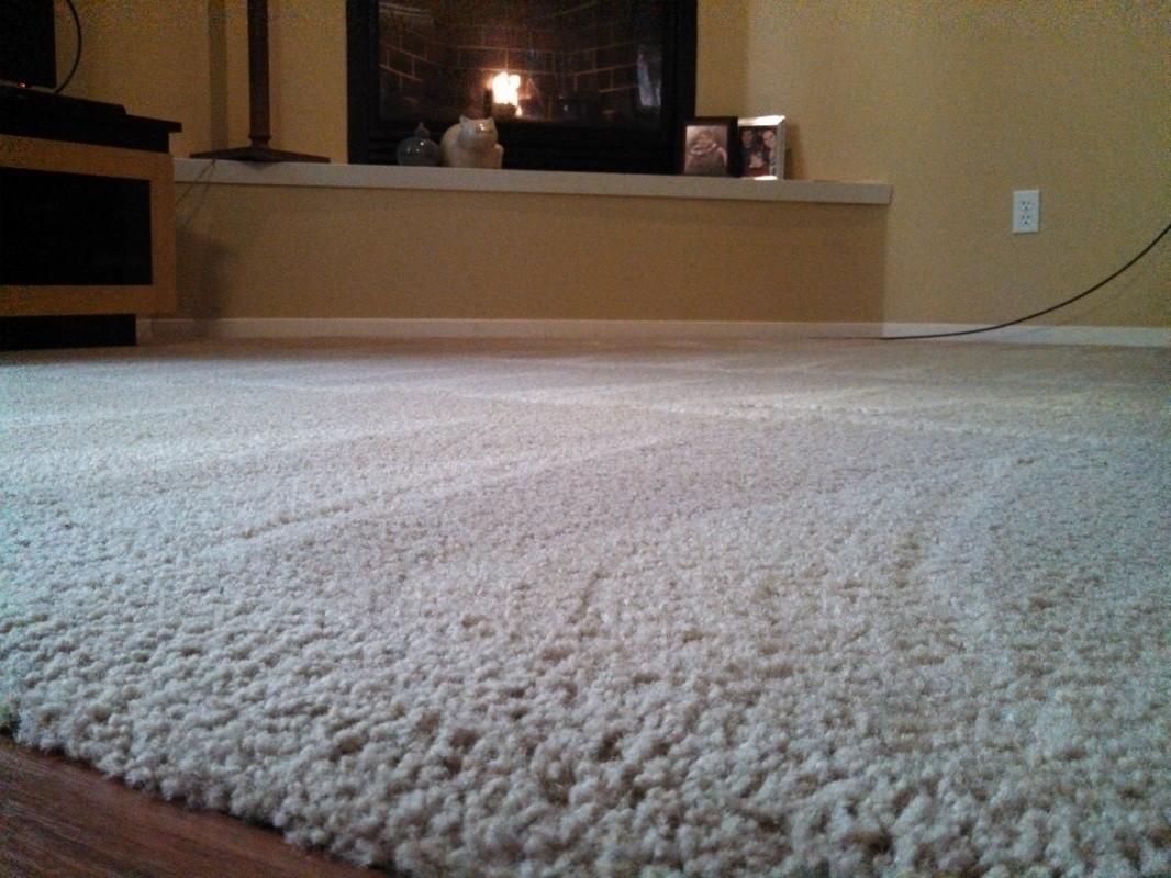 2020 How Long Does It Take for Carpet to Dry After ...